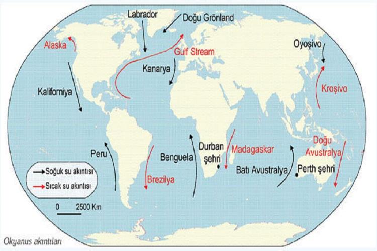 Dünyadaki okyanus akıntıları özellikleri  etkileri nelerdir