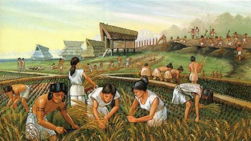 Ekonomik Faaliyetlerin Sosyal ve Kültürel Etkileri ve Tarihçeleri