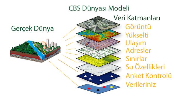 CBS Nedir?
